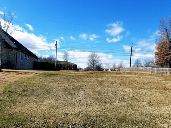 Lots and Land - Muscle Shoals, AL (photo 3)