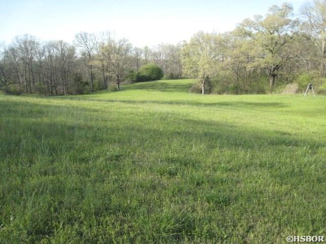 Lots and Land - Bonnerdale, AR (photo 4)
