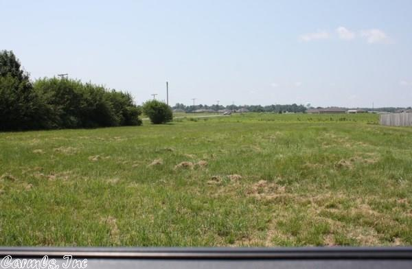 Lots and Land - Scott, AR (photo 4)