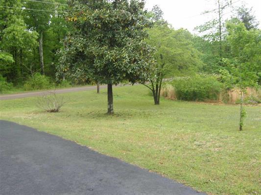 Residential/Single Family - Michie, TN (photo 3)