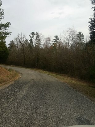 Lots and Land - Scotts Hill, TN (photo 2)