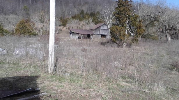 Lots and Land - Eidson, TN (photo 5)