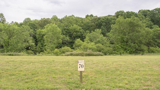 Lots and Land - Loudon, TN (photo 5)