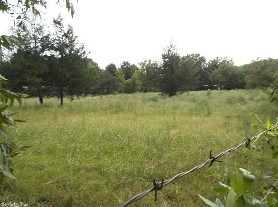 Lots and Land - Pangburn, AR (photo 4)