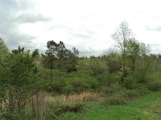 Lots and Land - Riceville, TN