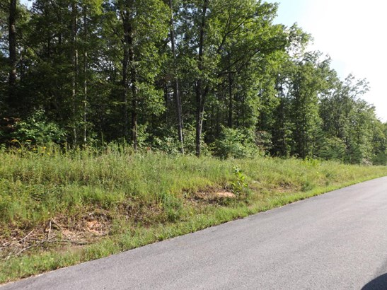 Lots and Land - Clarkrange, TN (photo 4)