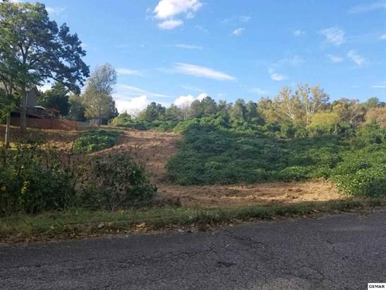 Lots and Land - Talbott, TN (photo 1)