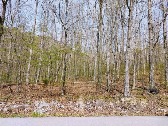 Lots and Land - Primm Springs, TN