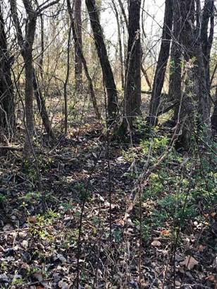 Lots and Land - Jackson, TN (photo 1)