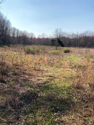 Lots and Land - Jackson, TN (photo 3)