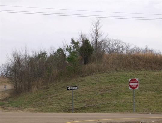 Lots and Land - Somerville, TN (photo 4)