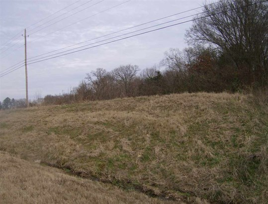 Lots and Land - Somerville, TN (photo 5)
