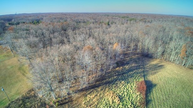 Lots and Land - McMinnville, TN (photo 4)