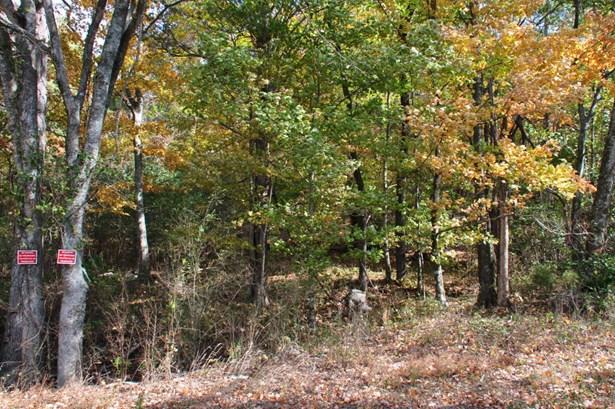 Lots and Land - Stevenson, AL (photo 1)