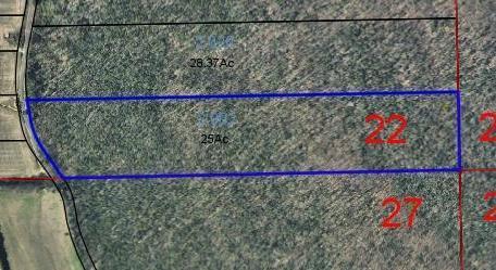 Lots and Land - Stevenson, AL (photo 3)