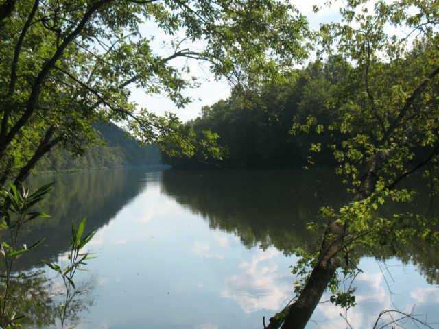 Lots and Land - Celina, TN (photo 2)