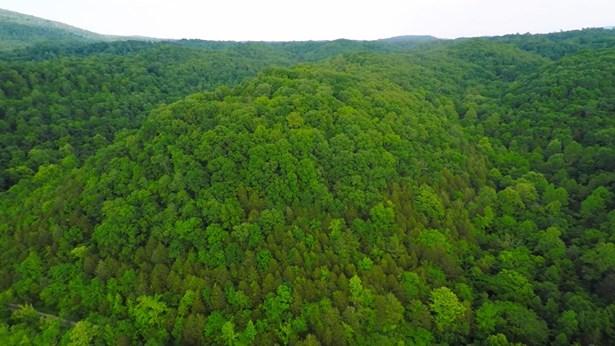 Lots and Land - Celina, TN (photo 3)