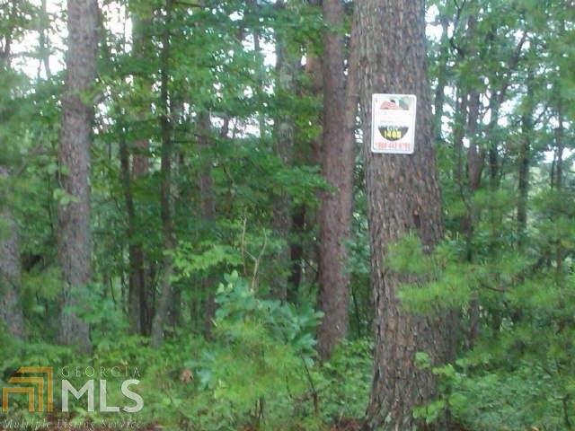 Lots and Land - Ranger, GA (photo 1)