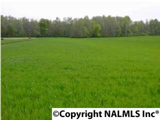 Lots and Land - HAZEL GREEN, AL (photo 1)