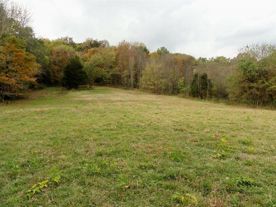 Lots and Land - Elkton, TN (photo 3)