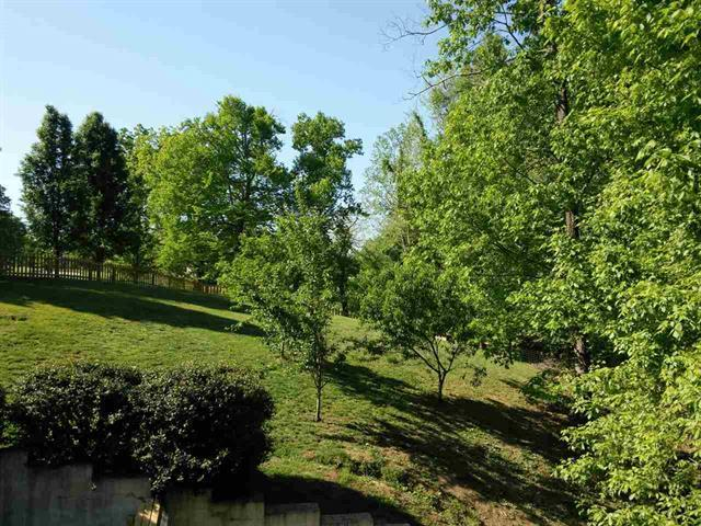 Residential/Single Family - Baneberry, TN (photo 4)