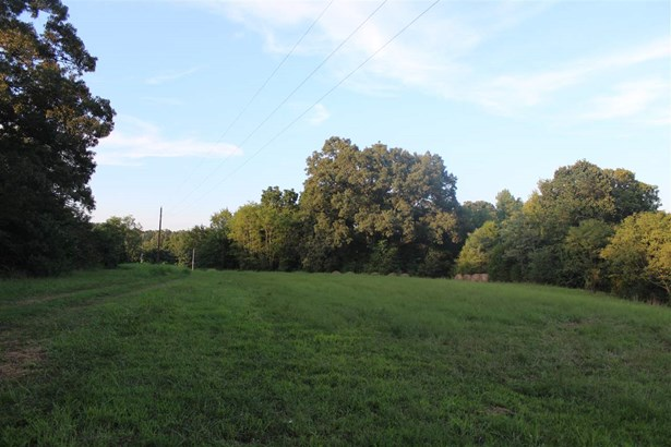 Lots and Land - Bolivar, TN (photo 4)