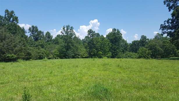 Lots and Land - Goodspring, TN (photo 1)