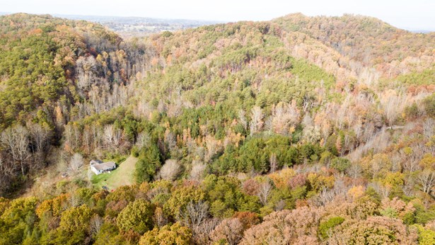 Lots and Land - Maryville, TN (photo 3)