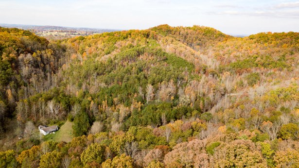 Lots and Land - Maryville, TN (photo 4)