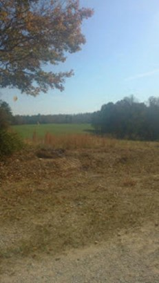 Lots and Land - Deer Lodge, TN (photo 1)