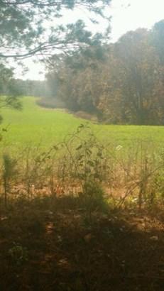 Lots and Land - Deer Lodge, TN (photo 2)