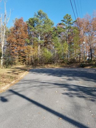 Lots and Land - Tunnel Hill, GA (photo 4)