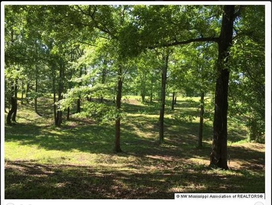 Lots and Land - Lamar, MS (photo 2)