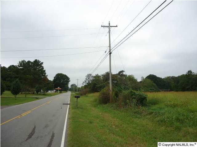 Lots and Land - GUNTERSVILLE, AL (photo 2)