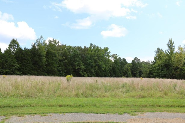 Lots and Land - Mount Pleasant, MS (photo 1)