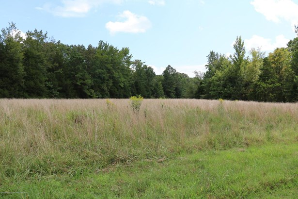 Lots and Land - Mount Pleasant, MS (photo 2)