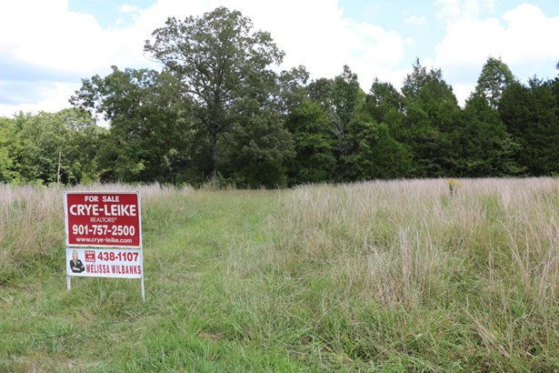 Lots and Land - Mount Pleasant, MS (photo 3)