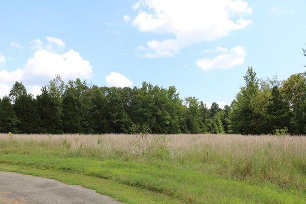Lots and Land - Mount Pleasant, MS (photo 4)