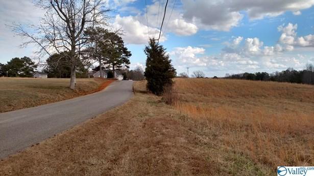 Lots and Land - Guntersville, AL