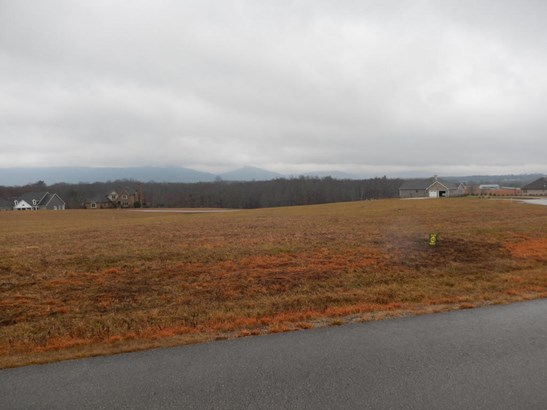 Lots and Land - Crossville, TN (photo 2)