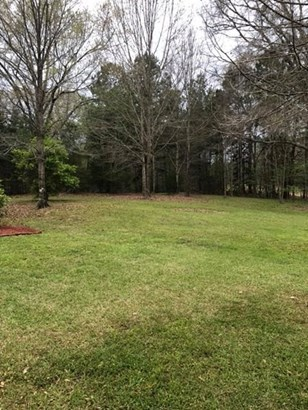 Residential/Single Family - Fayette, MS (photo 5)