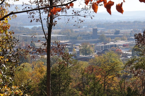 Lots and Land - South Pittsburg, TN (photo 1)