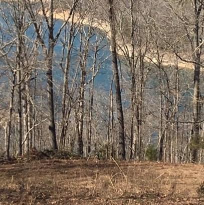 Lots and Land - Garfield, AR (photo 1)