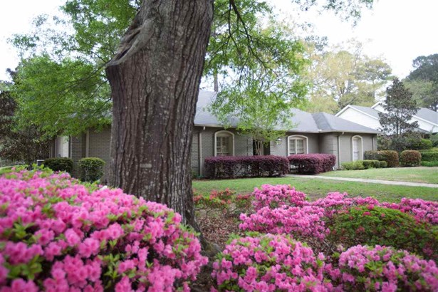 Residential/Single Family - Jackson, MS (photo 4)