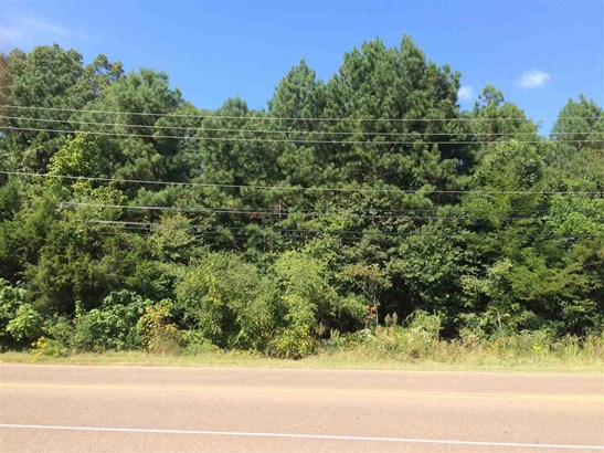 Lots and Land - Bartlett, TN (photo 1)