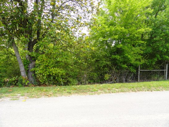 Lots and Land - QUEBECK, TN (photo 3)