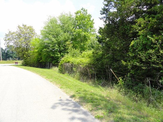 Lots and Land - QUEBECK, TN (photo 5)