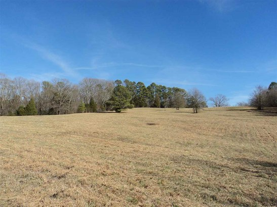Lots and Land - Charleston, TN (photo 4)