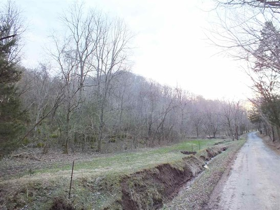 Lots and Land - Eidson, TN (photo 2)