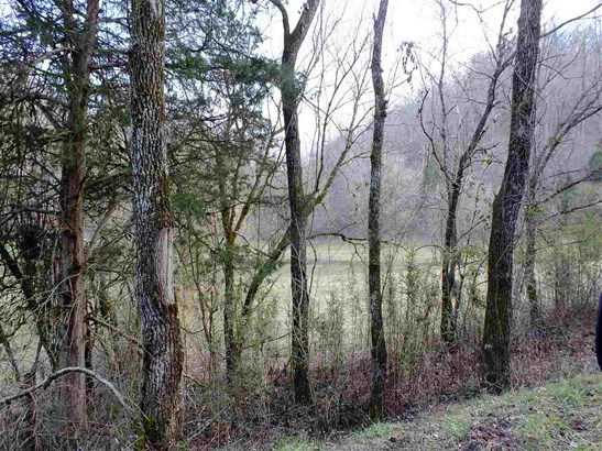 Lots and Land - Eidson, TN (photo 4)